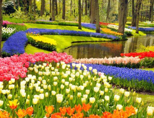 Os sete jardins mais fabulosos do mundo
